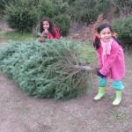 Tradiciones familiares en Navidad