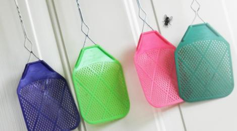 SabiTips: Elimina 10 plagas de tu hogar naturalmente